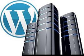 Hosting Optimizado Para WordPress: Saca todo el potencial a tu web