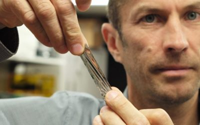 IBM comprime 330 TB de datos en una pequeña cinta magnética